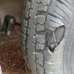 Tuson RV Brakes trailer tire pressure monitor system
